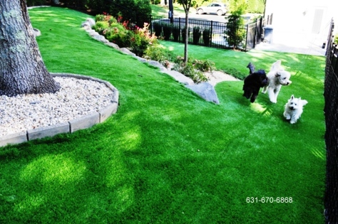 Synthetic Turf Dog Run Flooring Supplier Company, long island new york